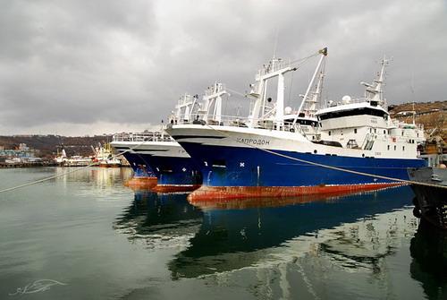 капитан рыболовного флота